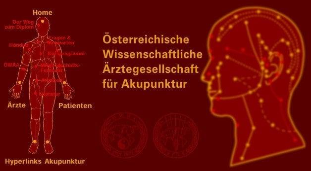 Akupunktur-Website